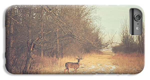 November Deer IPhone 6 Plus Case by Carrie Ann Grippo-Pike
