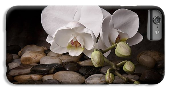 Orchid - Sensuous Virtue IPhone 6 Plus Case by Tom Mc Nemar