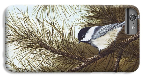 Out On A Limb IPhone 6 Plus Case by Rick Bainbridge