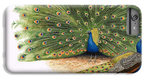 Peacocks IPhone 6 Plus Case by RB Davis