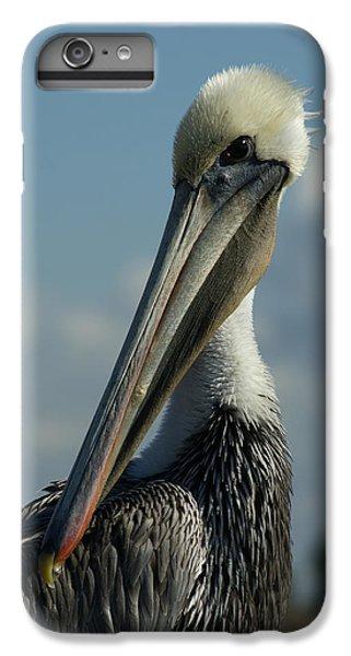 Pelican Profile IPhone 6 Plus Case by Ernie Echols