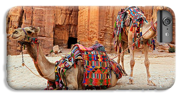Petra Camels IPhone 6 Plus Case by Stephen Stookey