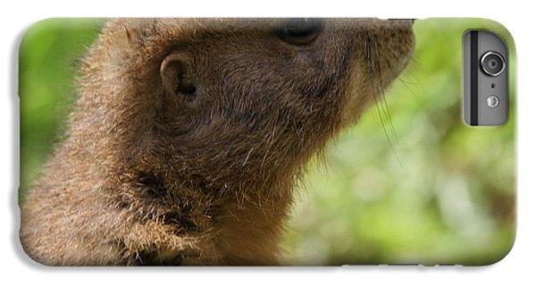 Prairie Dog Portrait IPhone 6 Plus Case by Dan Sproul