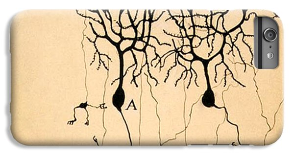 Purkinje Cells By Cajal 1899 IPhone 6 Plus Case by Science Source