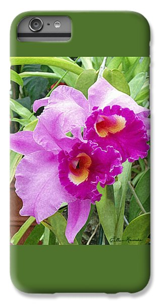 Purple Cattleya Orchids IPhone 6 Plus Case by Ellen Henneke