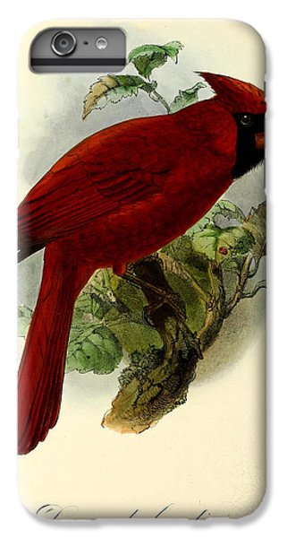 Red Cardinal IPhone 6 Plus Case by J G Keulemans