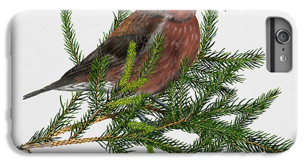 Red Crossbill -common Crossbill Loxia Curvirostra -bec-crois Des Sapins -piquituerto -krossnefur  IPhone 6 Plus Case by Urft Valley Art