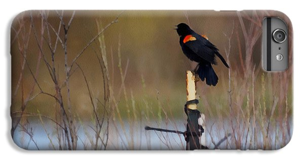 Red Winged Blackbird 2 IPhone 6 Plus Case by Ernie Echols