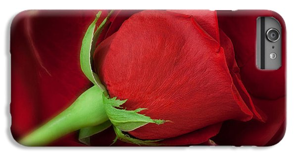 Rose II IPhone 6 Plus Case by Andreas Freund
