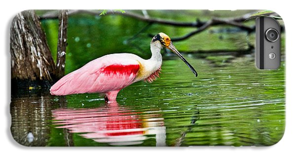 Roseate Spoonbill Wading IPhone 6 Plus Case by Anthony Mercieca