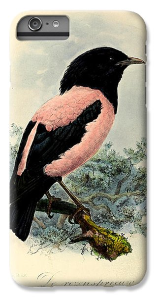 Rosy Starling IPhone 6 Plus Case by J G Keulemans