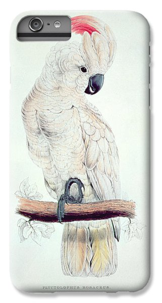 Salmon Crested Cockatoo IPhone 6 Plus Case by Edward Lear