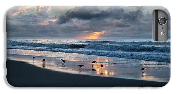 Sandpipers In Paradise IPhone 6 Plus Case by Betsy Knapp