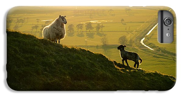 Scottish Sheep And Lamb IPhone 6 Plus Case by Mr Doomits
