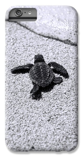 Sea Turtle IPhone 6 Plus Case by Sebastian Musial