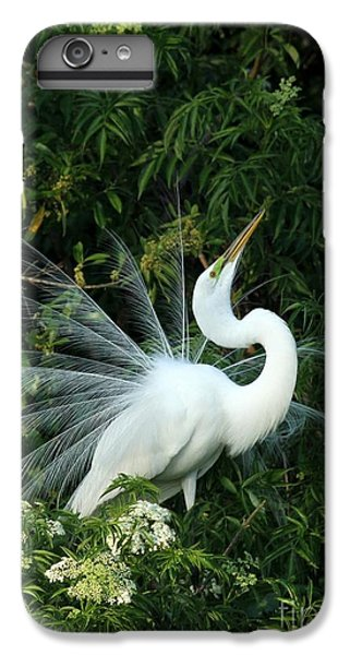 Showy Great White Egret IPhone 6 Plus Case by Sabrina L Ryan