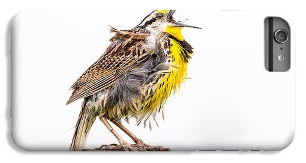 Singing Meadowlark 3rd Of 3 IPhone 6 Plus Case by Bill Swindaman