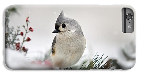 Snow White Tufted Titmouse IPhone 6 Plus Case by Christina Rollo