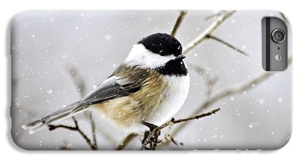 Snowy Chickadee Bird IPhone 6 Plus Case by Christina Rollo