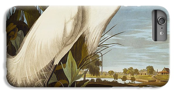 Snowy Heron Or White Egret IPhone 6 Plus Case by John James Audubon
