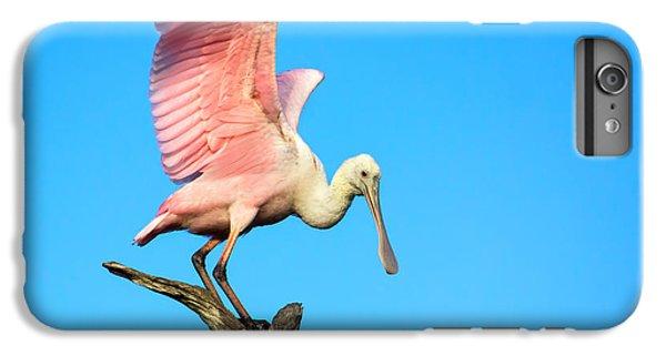 Spoonbill Flight IPhone 6 Plus Case by Mark Andrew Thomas