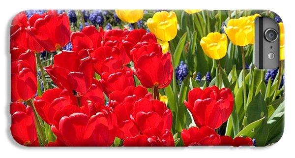 Spring Sunshine IPhone 6 Plus Case by Carol Groenen
