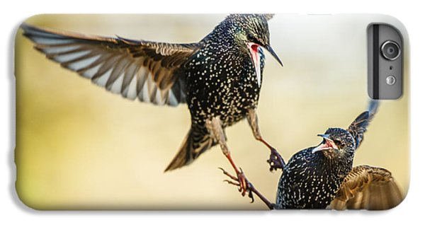 Starling Aerial Battle IPhone 6 Plus Case by Izzy Standbridge
