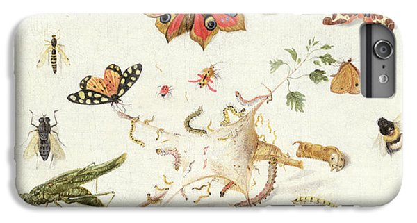 Study Of Insects And Flowers IPhone 6 Plus Case by Ferdinand van Kessel