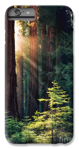 Sunlit From Heaven IPhone 6 Plus Case by Jane Rix