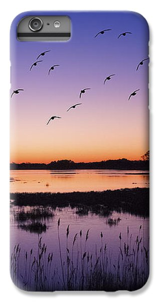 Sunrise At Assateague - Wetlands - Silhouette  IPhone 6 Plus Case by Shara Lee