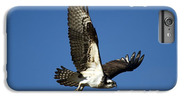 Take Flight IPhone 6 Plus Case by Mike  Dawson