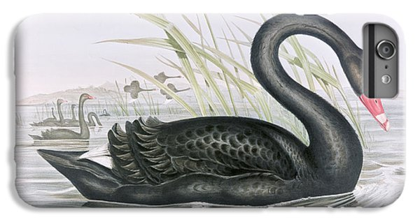The Black Swan IPhone 6 Plus Case by John Gould