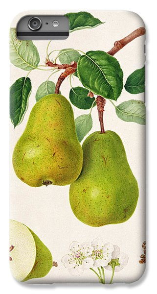 The D'auch Pear IPhone 6 Plus Case by William Hooker
