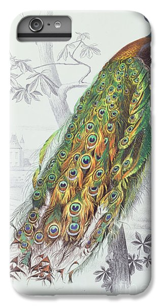 The Peacock IPhone 6 Plus Case by A Fournier