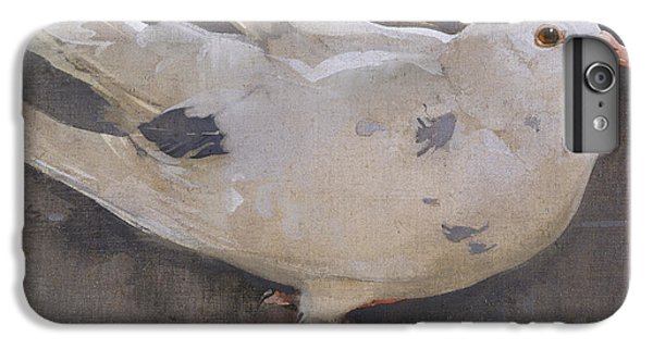 The Pigeon IPhone 6 Plus Case by Joseph Crawhall