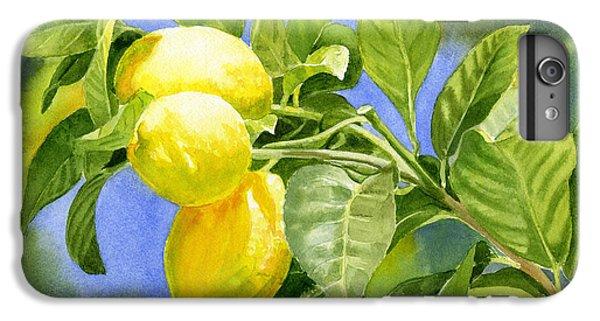 Three Lemons IPhone 6 Plus Case by Sharon Freeman