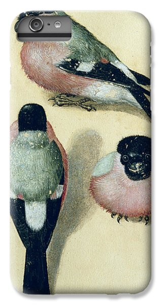 Three Studies Of A Bullfinch IPhone 6 Plus Case by Albrecht Durer