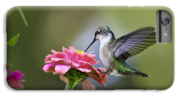 Tranquil Joy IPhone 6 Plus Case by Christina Rollo