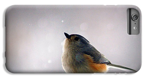 Tufted Titmouse IPhone 6 Plus Case by Cricket Hackmann