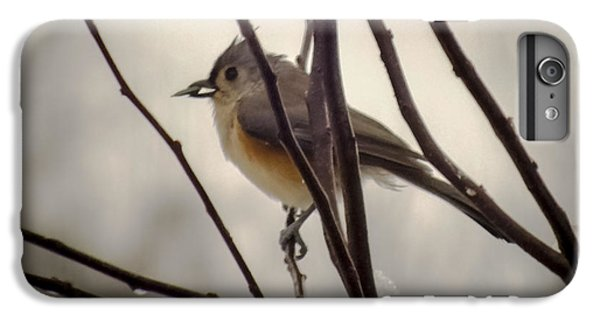 Tufted Titmouse IPhone 6 Plus Case by Karen Wiles