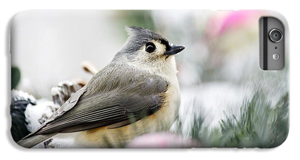 Tufted Titmouse Portrait IPhone 6 Plus Case by Christina Rollo