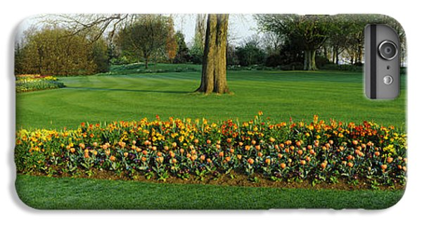 Tulips In Hyde Park, City IPhone 6 Plus Case by Panoramic Images