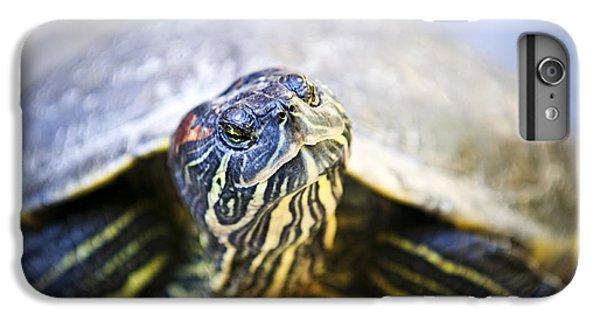 Turtle IPhone 6 Plus Case by Elena Elisseeva