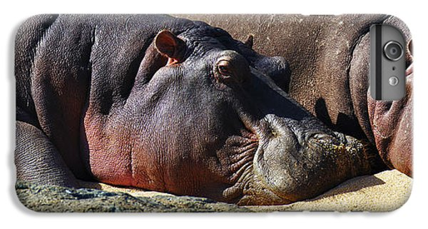 Two Hippos Sleeping On Riverbank IPhone 6 Plus Case by Johan Swanepoel