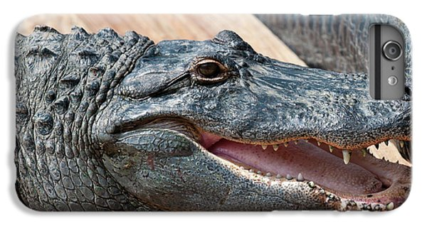 Usa, Florida Gatorland, Florida IPhone 6 Plus Case by Michael Defreitas