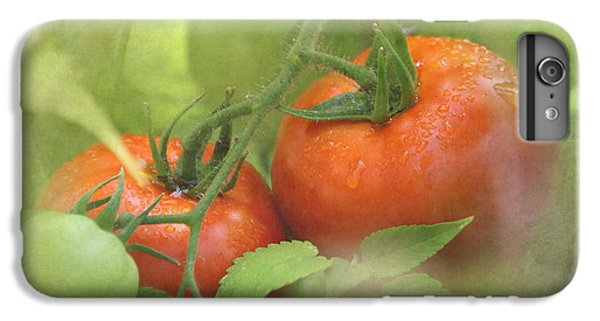 Vine Ripened Tomatoes IPhone 6 Plus Case by Angie Vogel