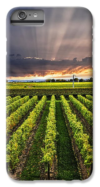 Vineyard At Sunset IPhone 6 Plus Case by Elena Elisseeva