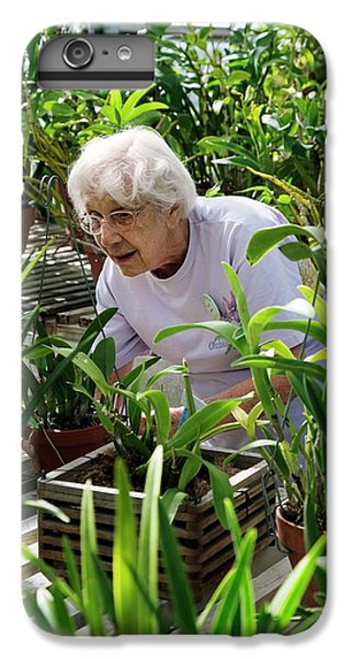Volunteer At A Botanic Garden IPhone 6 Plus Case by Jim West