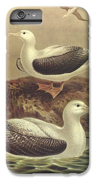 Wandering Albatross IPhone 6 Plus Case by J G Keulemans