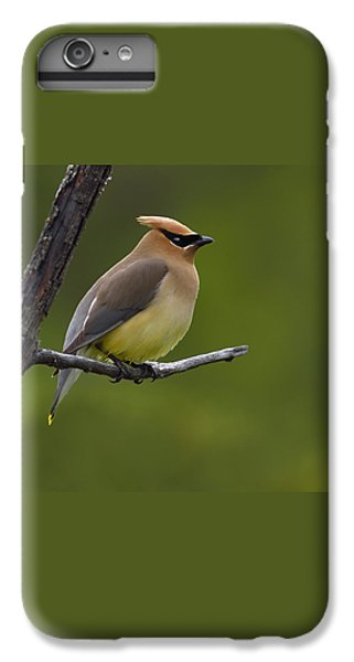 Wax On IPhone 6 Plus Case by Tony Beck